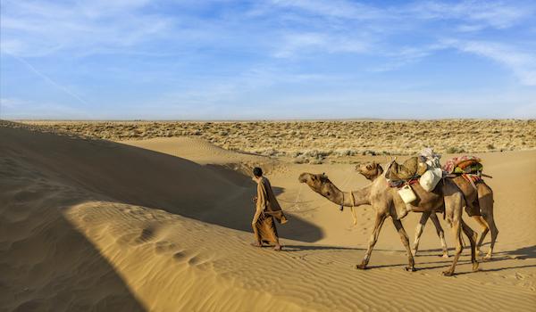 nomad-camel-desert