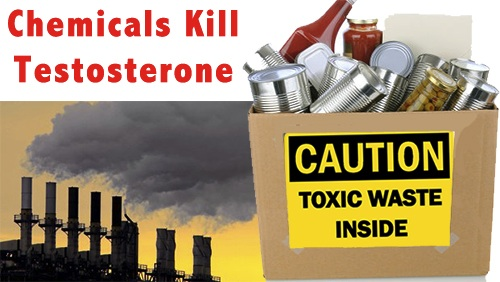 Chemicals Kill Testosterone