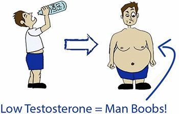 Low fat diet equals low testosterone