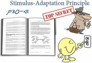 Stimulus Adaptation Principle