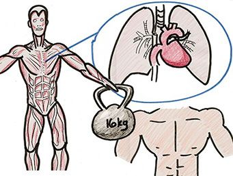 Heart lungs and chest workout