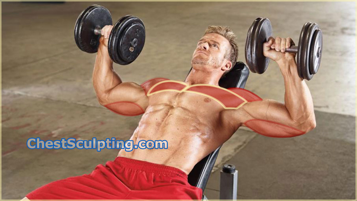 Incline Dumbbell Press - The Best Upper Chest Exercise