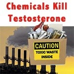 Chemicals in Food Kill Testosterone