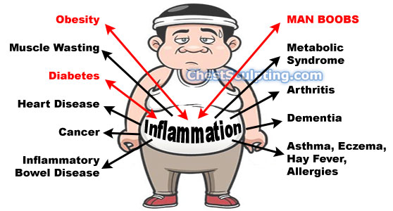 How Chronic Inflammation Causes Man Boobs | Chest Sculpting