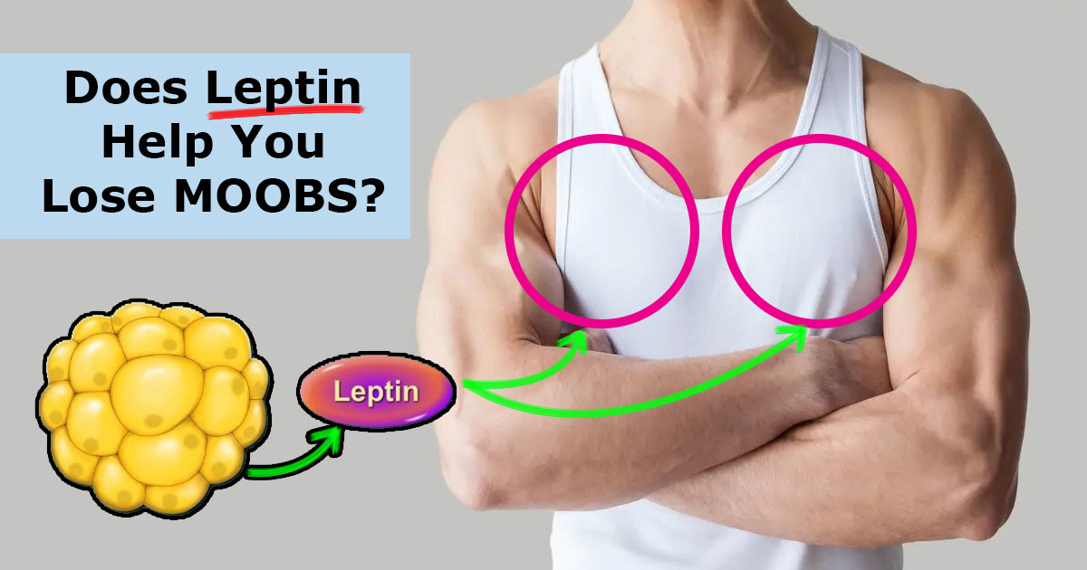 Does Leptin Help You Lose Man Boobs?